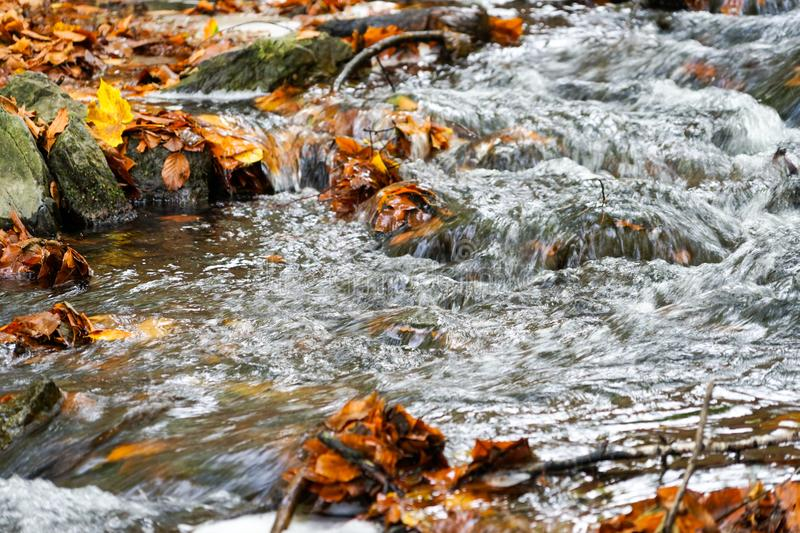 Autumn, forest, colorful leaves and waterfall, stream, lake views stock image