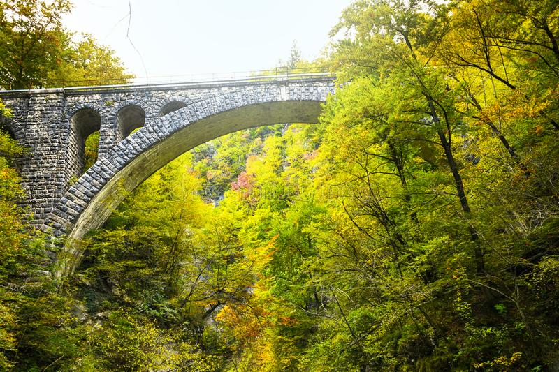 Autumn forest colors with old rocky train bridge in natural park of Vintgar. River gorge Slovenia stock images