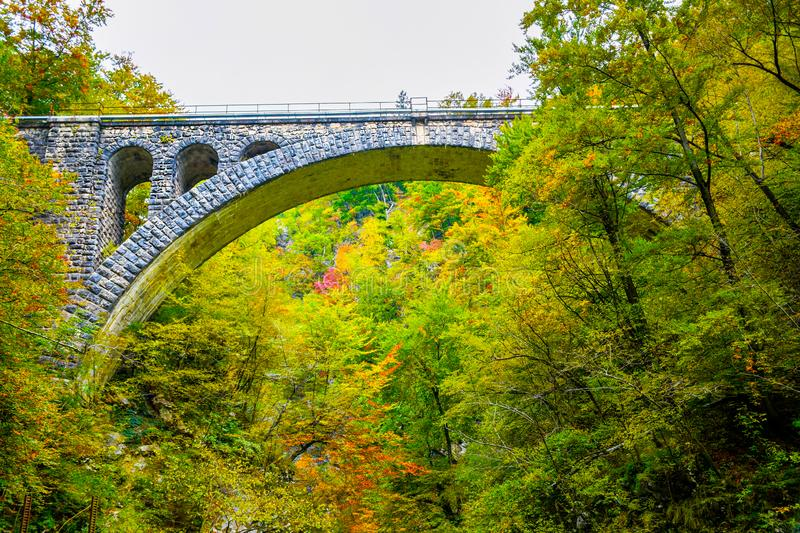 Autumn forest colors with old rocky train bridge in natural park of Vintgar. River gorge Slovenia royalty free stock photo