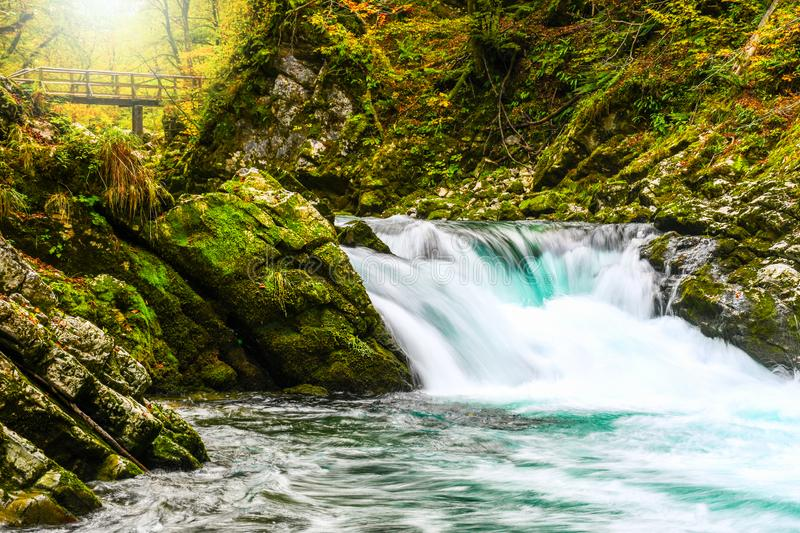 Autumn forest colors with small turquoise waterfall in natural park of Vintgar royalty free stock images