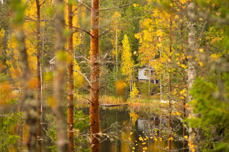 Finnish cottage in autumn forest. Autumn forest with cottage in background beside lake, Finland royalty free stock photos