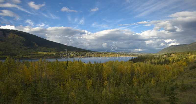Download Autumn Forest And Lake Royalty Free Stock Photo - Image: 3374315