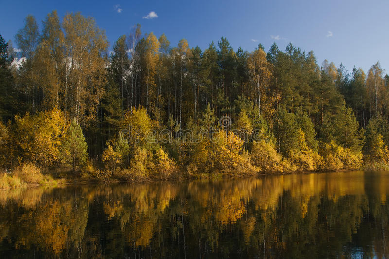 Autumn Forest Lake stock foto