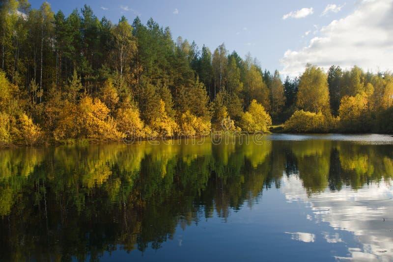 Autumn forest lake stock photo