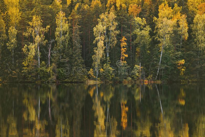 Autumn forest and lake reflection landscape in Finland stock photos