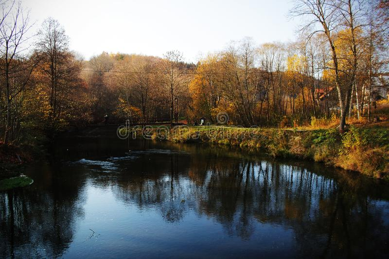 Autumn forest landscape with clear river water. Autumn forest landscape reflection in clear river water, lake, trees, scene, crystal, beauty, environment stock photo