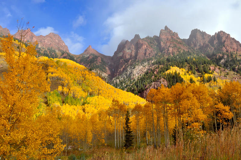 Autumn forest and mountains royalty free stock photo