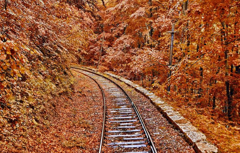 Autumn Forest Railroad. Foggy autumn forest railroad in Romania royalty free stock photography