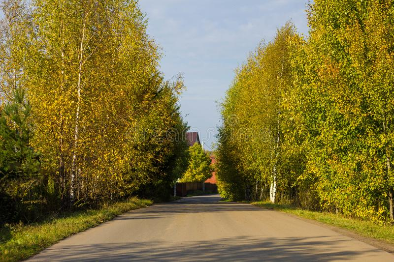 Autumn forest road with colorful yellow and orange trees against a clear sky on a Sunny day. Colorful landscape of Russian nature stock images