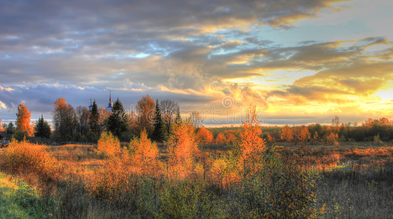 Autumn forest, Russia royalty free stock image