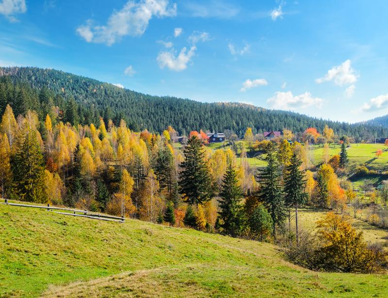 Autumn forest on the slopes of the mountains stock photos