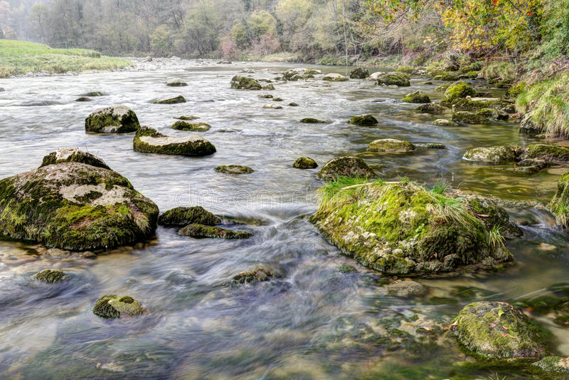 Autumn forest stream stock photo