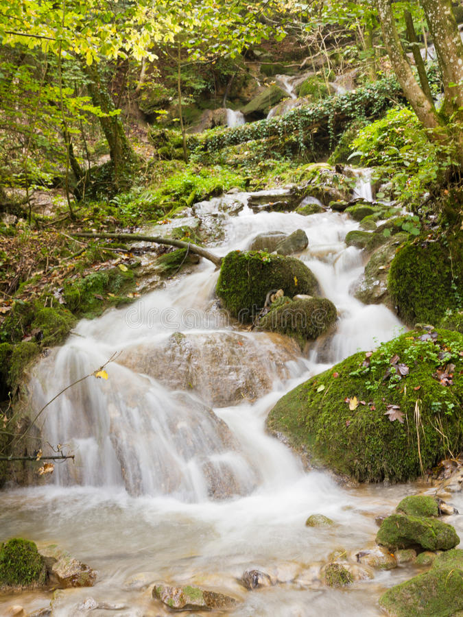 Download Autumn  forest stream stock image. Image of flow, cool - 26870619
