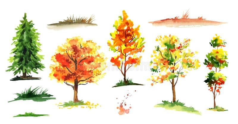 Autumn forest tree set. Watercolor hand drawn illustration. stock illustration