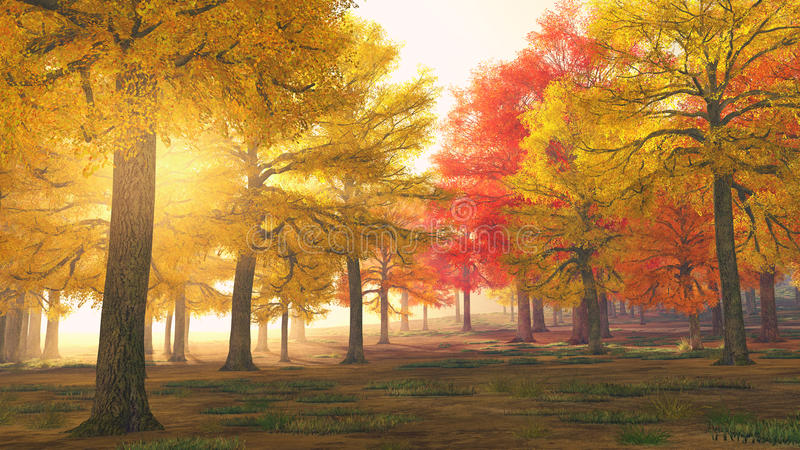 Autumn forest trees in magical colors. Yellow and red leaves of October / November autumn trees in foggy forest. Sun is shining through the autumn leaves of royalty free stock image