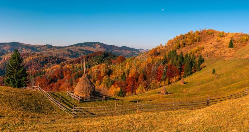 Autumn forest trees in the mountains panorama trees in the mountains Meadow with haystack. Autumn forest trees in the mountains panorama trees in the mountains royalty free stock images