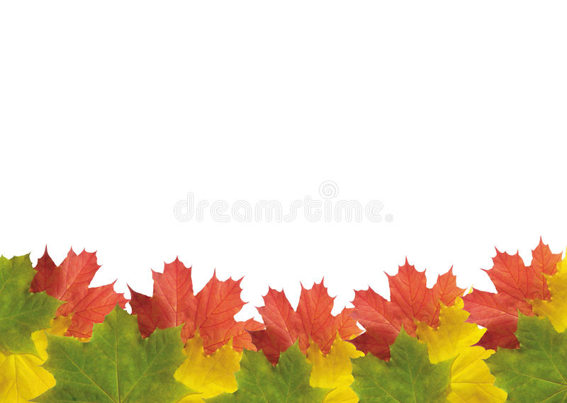Autumn frame. royalty free stock images