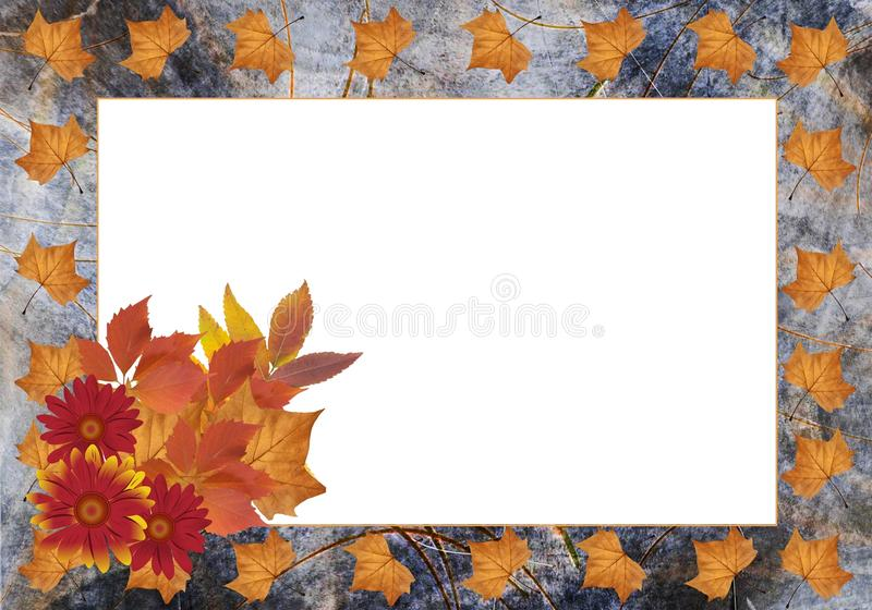 Download Autumn frame stock image. Image of leaves, various, background - 21935429