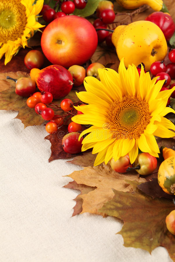 Download Autumn frame stock photo. Image of fruit, fall, linden - 26807242