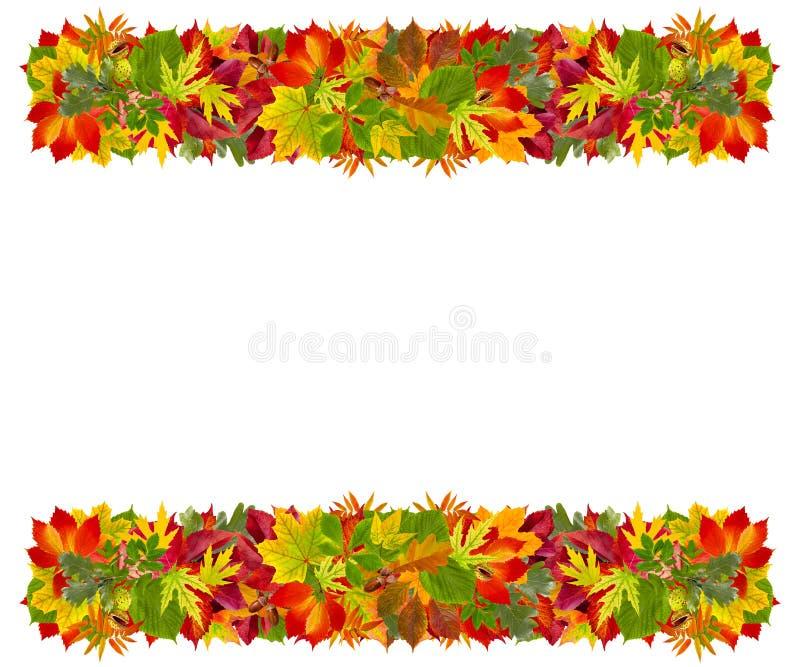 Download Autumn frame stock photo. Image of nature, foliage, autumnal - 27740914