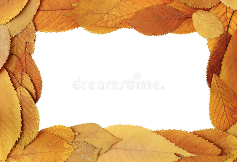 Download Autumn Frame Stock Image - Image: 31166731