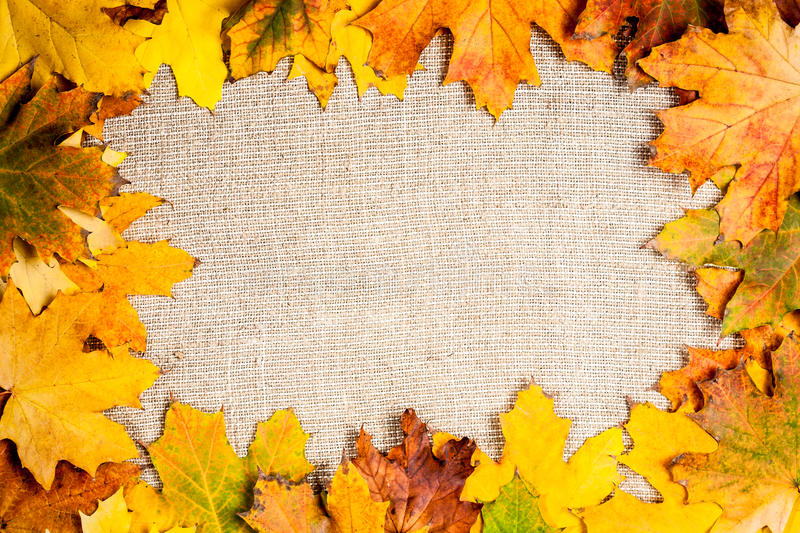 Autumn Frame On Canvas Stock Images