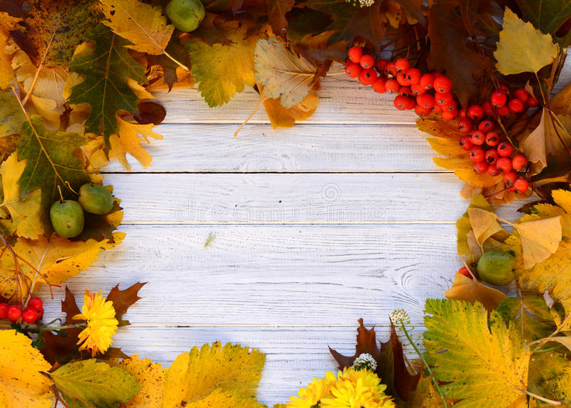 Autumn frame. Colourful autumn leaves frame on the wooden background stock photos