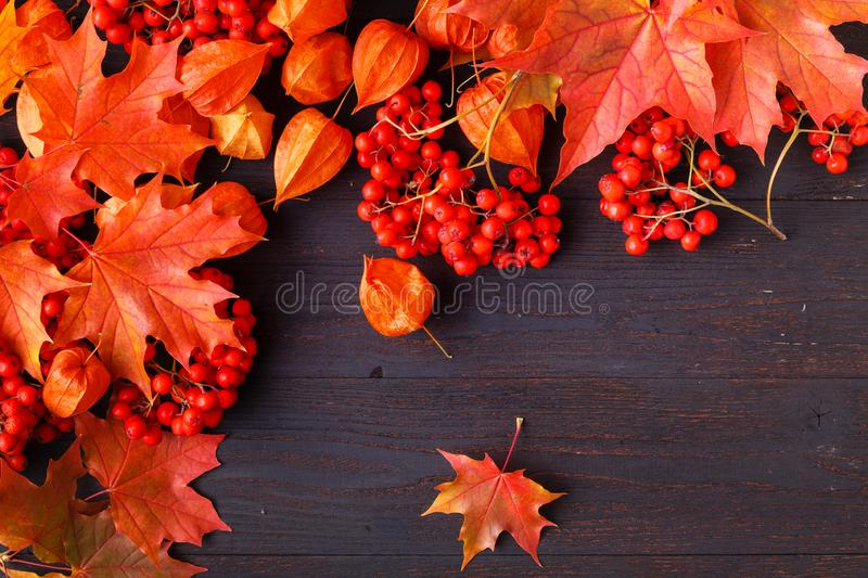 Autumn frame composition with fallen leaves on wooden with copy space for text. Thanksgiving, Halloween, seasonal fall concept fla. Autumn frame composition with stock image