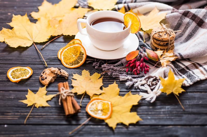 Autumn frame flat lay composition on a wooden background. Maple leaves, season tea, open notebook with empty sheets and warm scarf. Autumn frame flat lay royalty free stock images