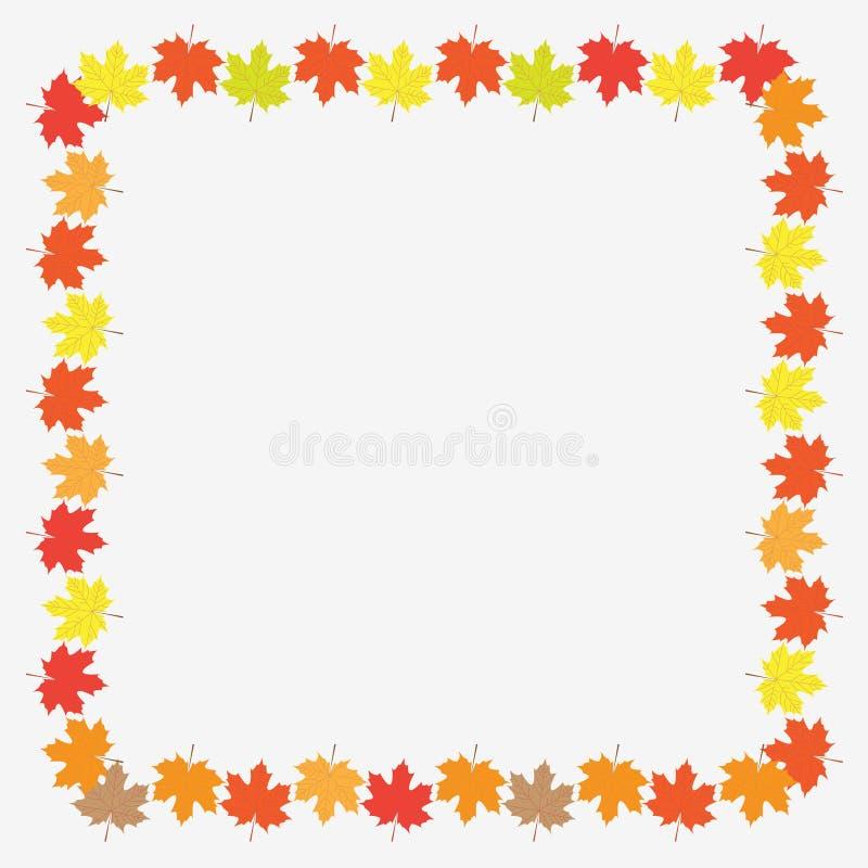 Download Autumn Frame With Maple Leaves Sobre O Fundo Branco Ilustração Do Vetor Ilustração Stock - Ilustração de beira, botany: 80102946