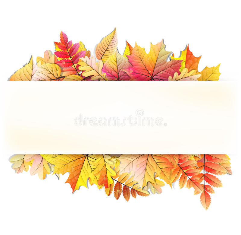 Free Autumn Frame With Fall Leaf. EPS 10 Royalty Free Stock Images - 54590279