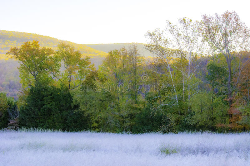 Autumn Frost. Pasture covered in frost on a autumn morning in the mountains royalty free stock image