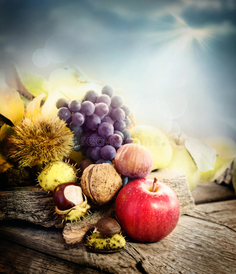 Autumn fruit royalty free stock photos