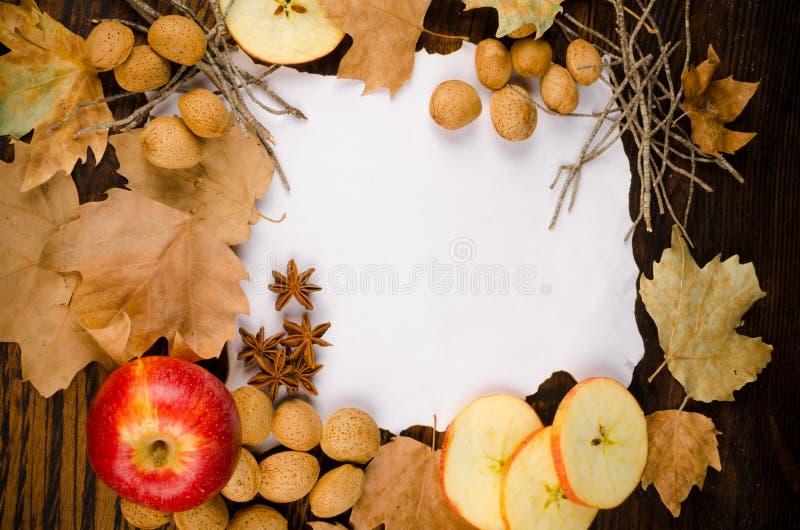 Autumn fruit stock photos