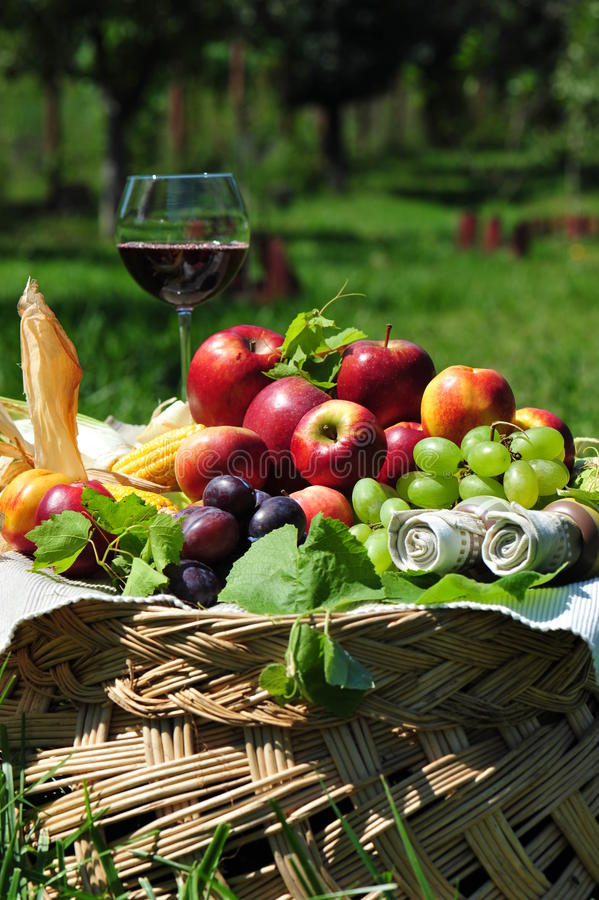 Autumn fruit basket. Wealthy harvest season suggested by this fruit basket composition stock photo