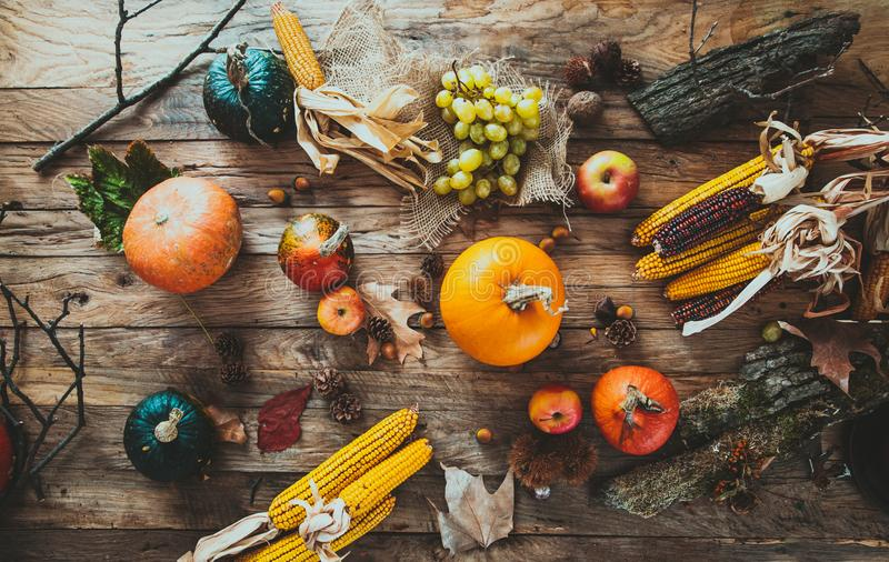 Autumn fruit on wood. Thanksgiving decoration royalty free stock images