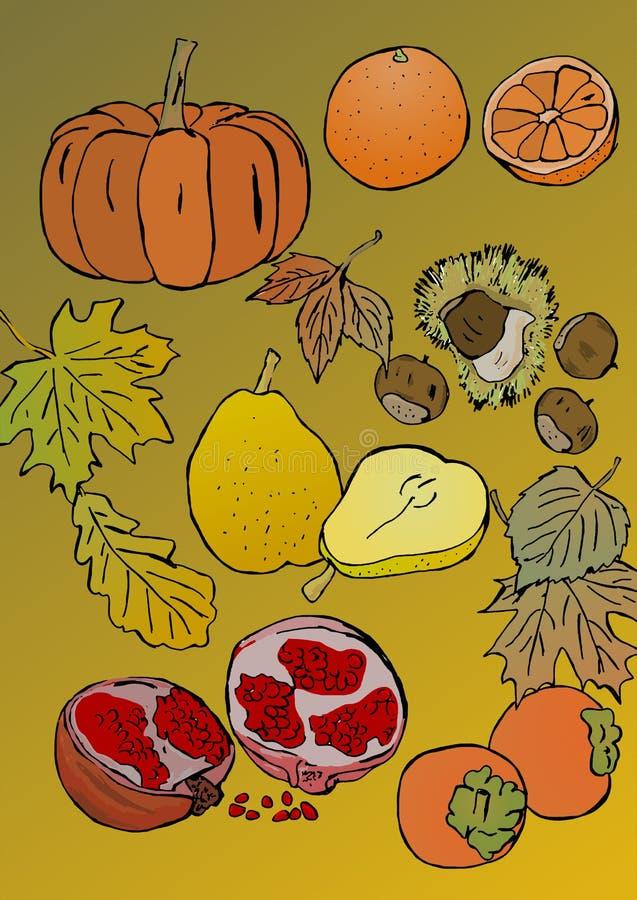 Autumn Fruits vector illustratie