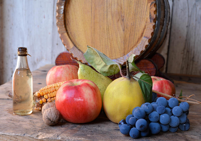 Autumn Fruits royaltyfri bild