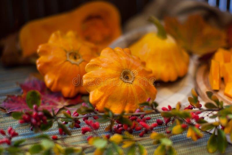 Autumn Fruits stockfotografie