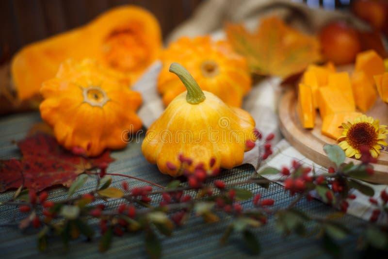 Autumn Fruits lizenzfreie stockfotos