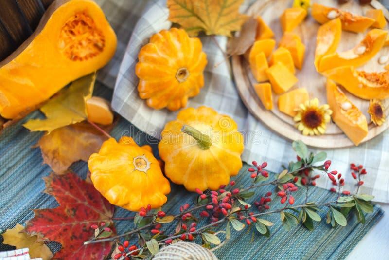 Autumn Fruits stockfotos