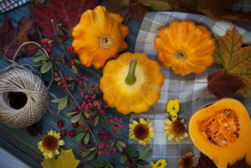 Autumn Fruits lizenzfreie stockfotografie
