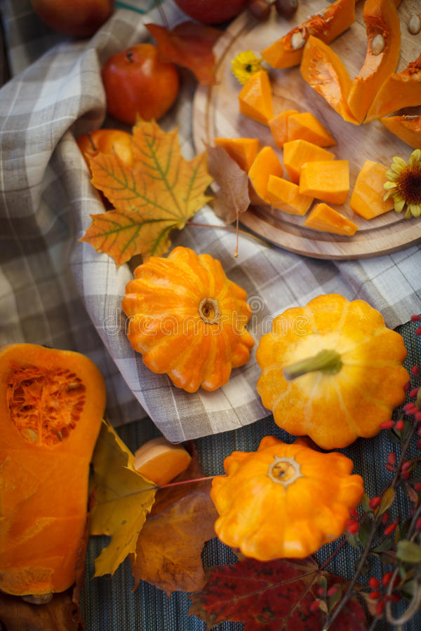 Autumn Fruits lizenzfreie stockbilder