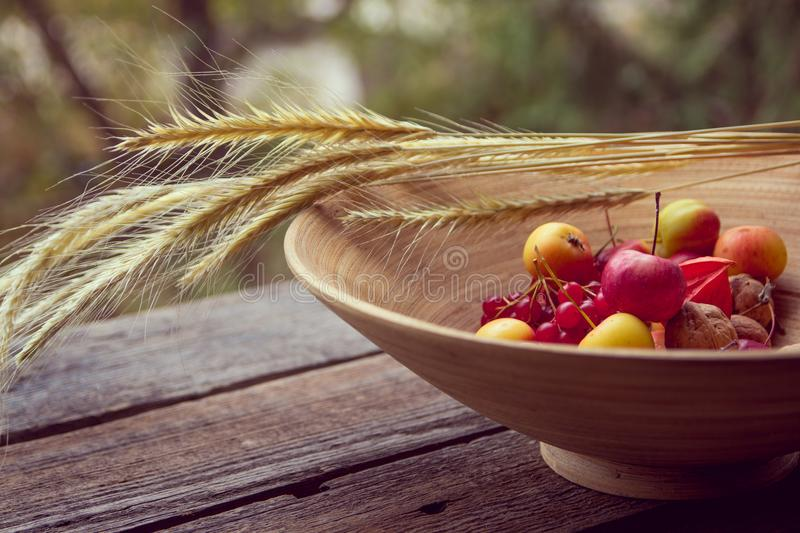 Autumn fruits and vegetables in a basket outdoor.  stock image
