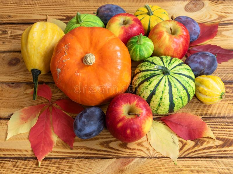 Autumn fruits and vegetables. Thanksgiving background concept. royalty free stock photography