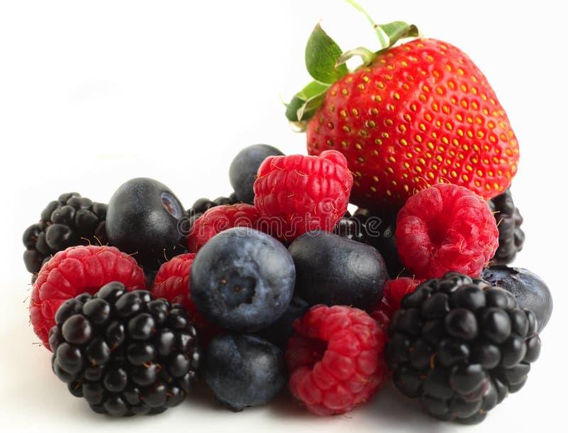 Autumn fruits on white royalty free stock image