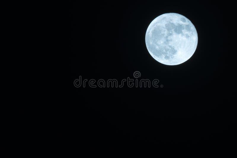Autumn Full Moon Against um céu noturno preto claro fotografia de stock royalty free