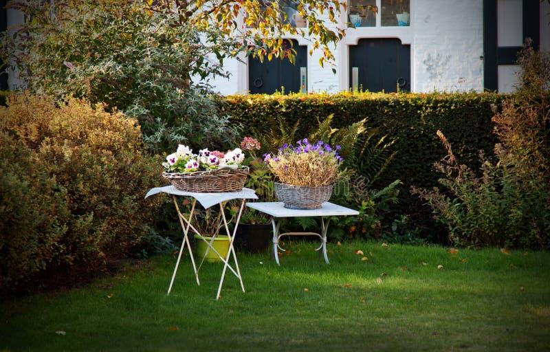 Download Autumn garden stock photo. Image of scene, season, house - 21959040