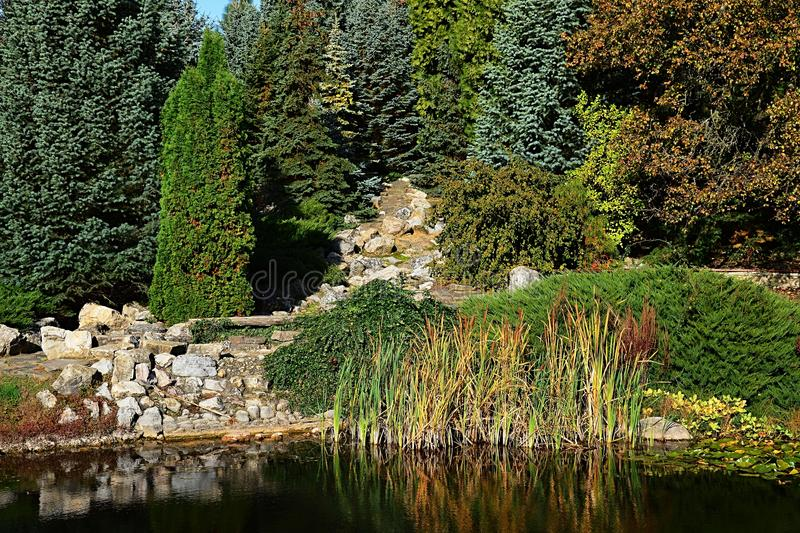Autumn garden with artificial pond and dried out stone waterfall reflecting on water surface. royalty free stock images