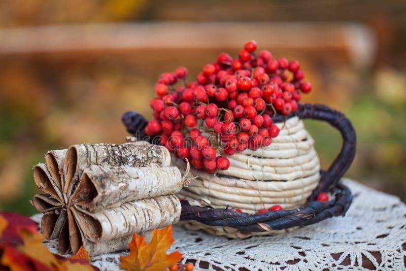 Autumn garden decor stock photos
